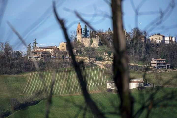 Agriturismo Piacenza - Agriturismo colli piacentini - Agriturismo Il Gelso